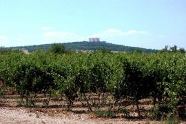 замок на горе, Кастель дель Монте