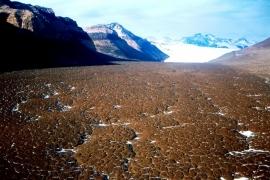 почва Сухих долин
