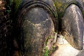 каменные когти Сигирии