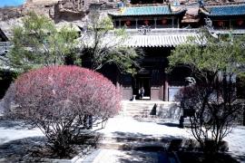 сады Юньгана