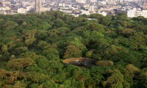 Мумбайские башни молчания
