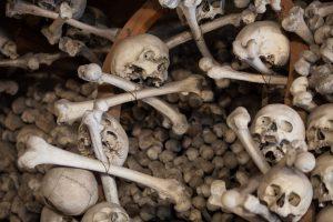 кости с черепами