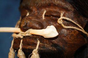 голова с костью