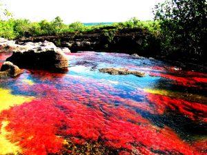 пятицветная река