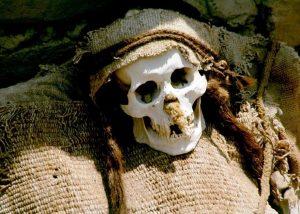 жуткий скелет чаучильи
