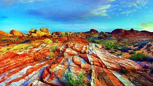 цветастые холмы